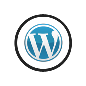 Wordpress - System CMS